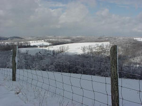 Winter_fields_sm.JPG